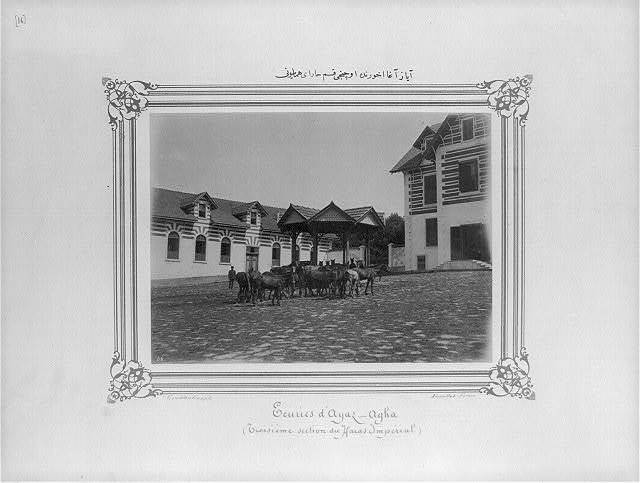 [In the Ayazağa stable, the third section of the Imperial Stud Farm] / Constantinople, Abdullah Frères.