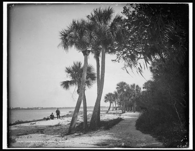 Indian River at Cocoa, Fla.