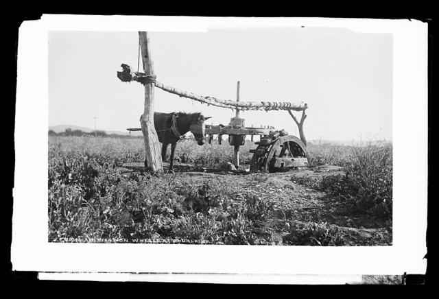 Irrigation wheel at Ahualalco [sic]