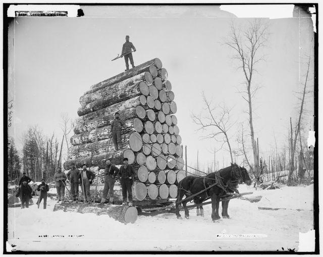 Logging a big load