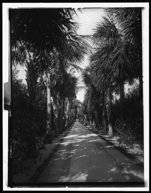[Palm Beach, Florida, Ocean Avenue]