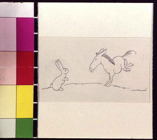 [Rabbit and bucking horse or mule]