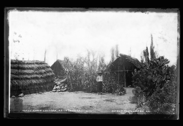 Straw cottage at Ixtacalco