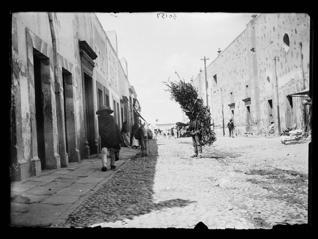 [Street and cargador, San Luis Potosi, Mexico]