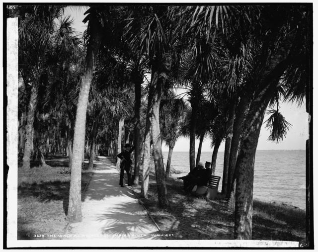 The walk at Rockledge, Indian River