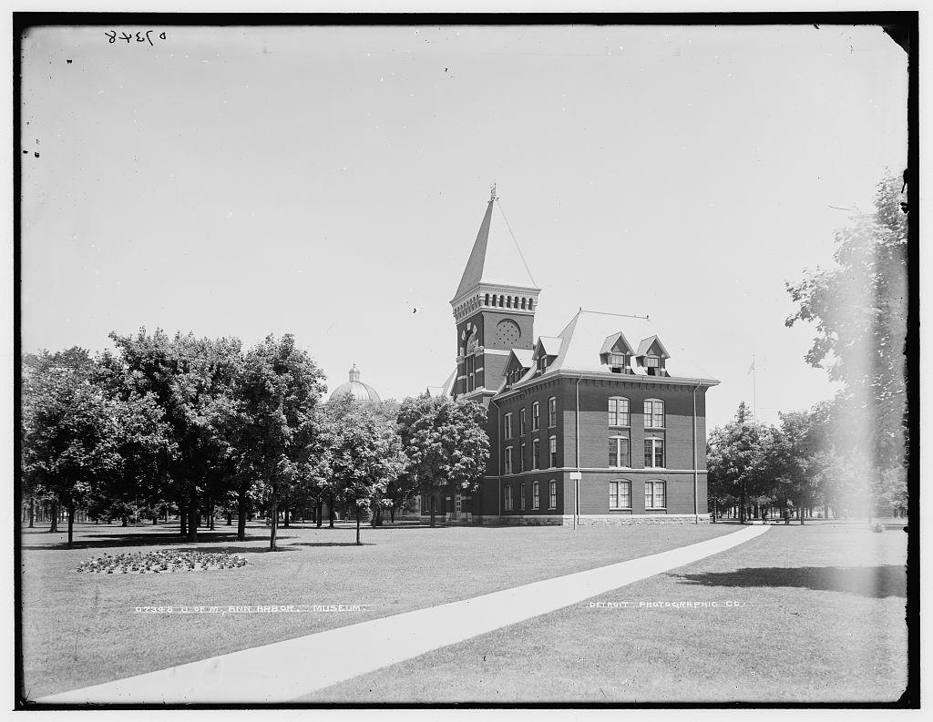 U. of M., Ann Arbor, Museum