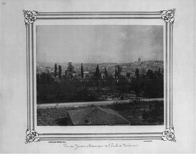 [View of the botanical gardens at the (Imperial Military) Medical School] / Abdullah Frères, Phot., Constantinople.