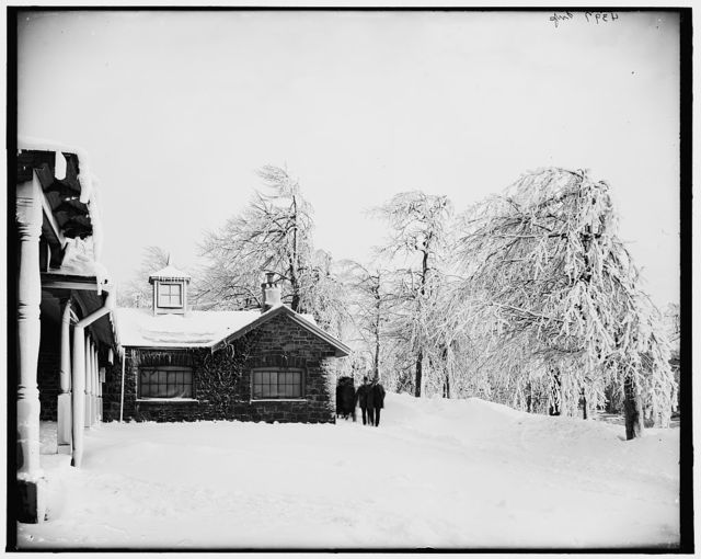 [Winter, Prospect Park, Niagara Falls]