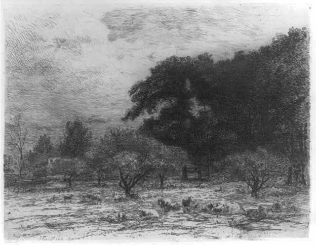 [Landscape with sheep in an orchard]