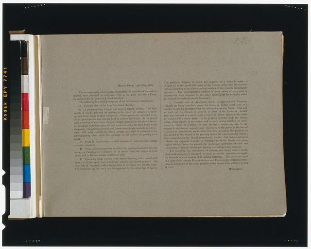 """[Page of text with description of introductory photographs from """"The attitudes of animals in motion""""]"""
