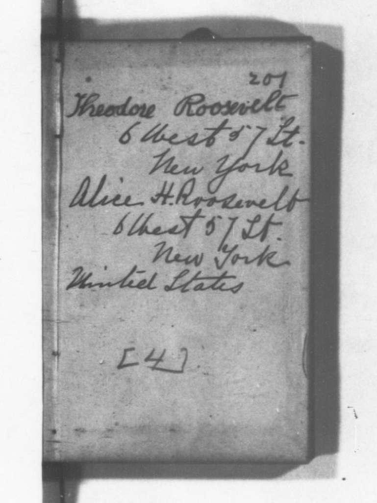 Theodore Roosevelt Papers: Series 8: Personal Diaries, 1878-1884; Vol. 4, 1881, Jan. 1-Dec. 26