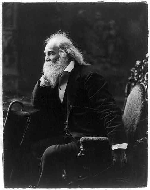 [Walt Whitman, three-quarter-length portrait, seated, facing left with elbow and nearby cane resting on a table]