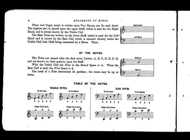 Winner's model violin method