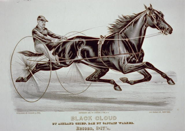 Black cloud by Ashland Chief, dam by Captain Walker -  record, 2:171/4
