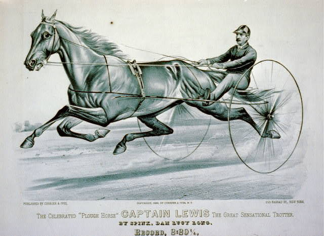 "Celebrated ""Plough horse"" Captain Lewis the great sensational trotter: By Spink, dam Lucy Long - record, 2:201/4"
