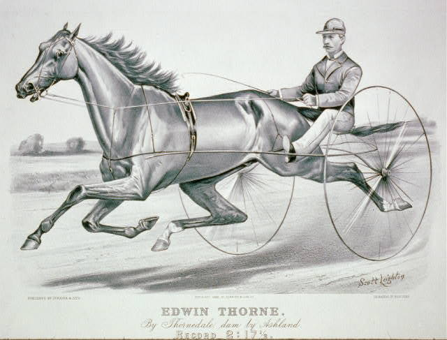 Edwin Thorne: By Thornedale, dam by Ashland