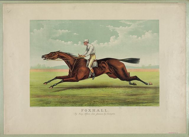 Foxhall: By King Alfonso, dam Jamaica, by Lexington