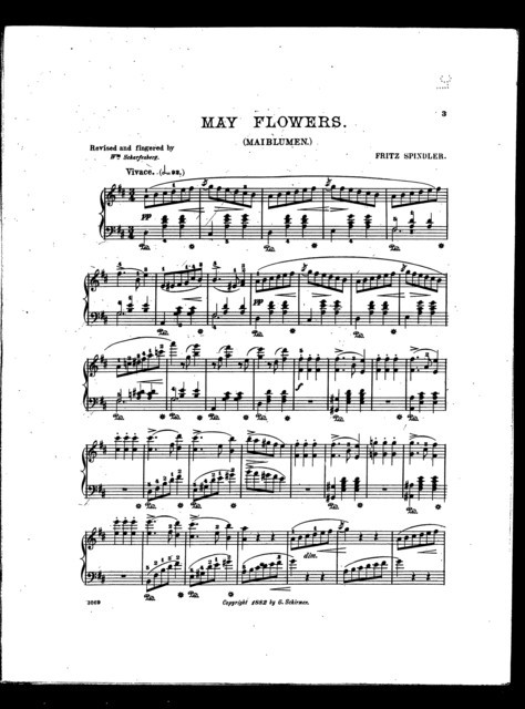 May flowers - Maiblumen