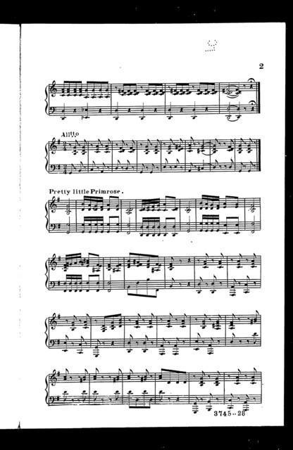 Primrose medley