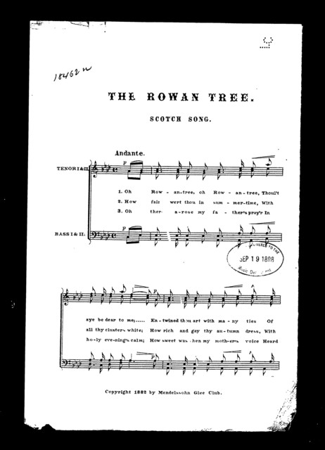 Rowan tree, The; Scotch song