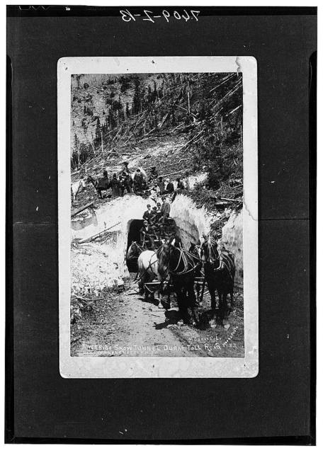 Stage on Ouray-Red Mountain toll road. Road used to haul ore from mining section to mills. Snow is from snow slide, winter of 1881. Picture was made in August 1882. Colorado
