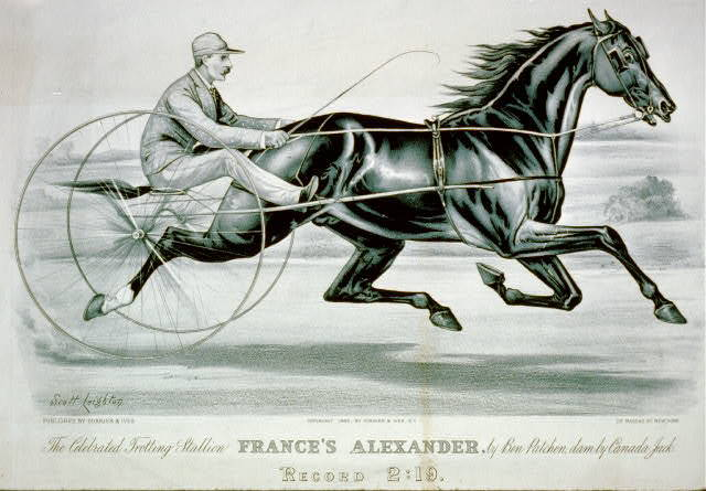 The celebrated trotting Stallion France's Alexander by Ben Patchen, dam by Canada Jack: Record 2:19