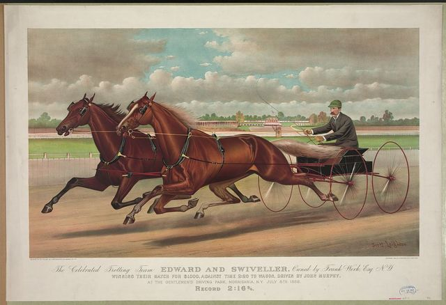 The celebrated trotting Team Edward and Swiveller, owned by Frank Work Esq. N.Y.: Winning their match for $1,000, against time 2:20 to Wagon, driven by John Murphy. At the gentlemen's driving park, Morrisania, N.Y. July 8th, 1882