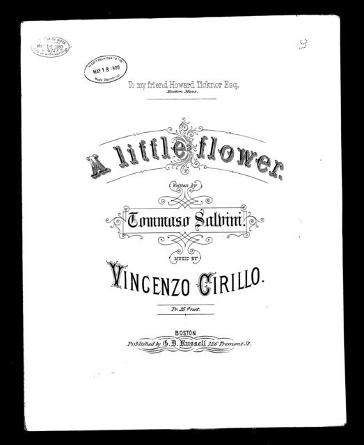 Little flower, A - Une Fiore