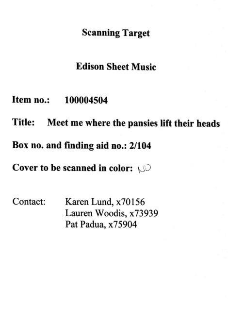 Meet me where the pansies lift their heads