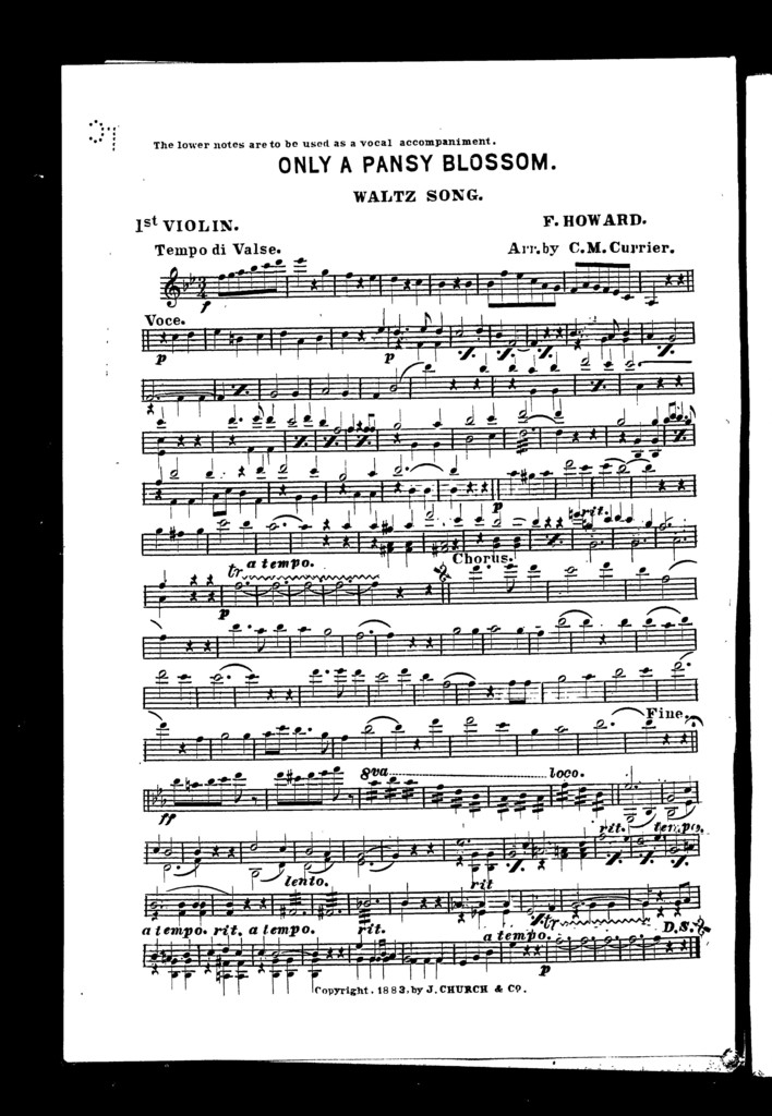 Only a pansy blossom; Waltz song [and] Song of the robin