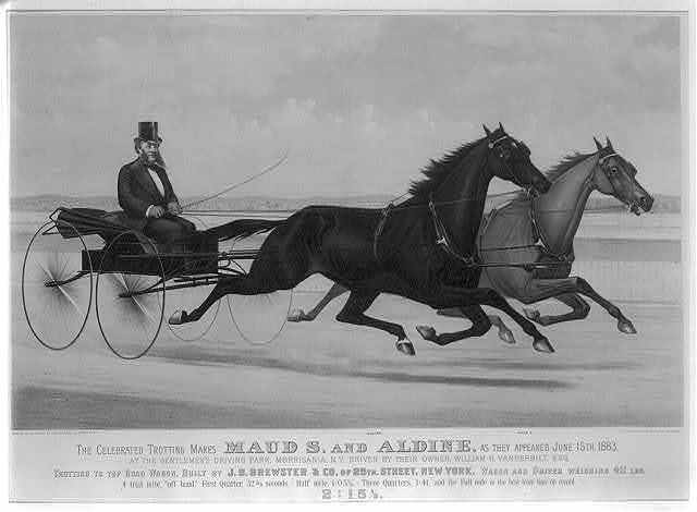 The celebrated trotting mares Maud S. and Aldine, as they appeared June 15th 1883: At the gentlemen's driving park, Morrisania, N.Y. driven by their owner, William H. Vanderbilt, Esq.