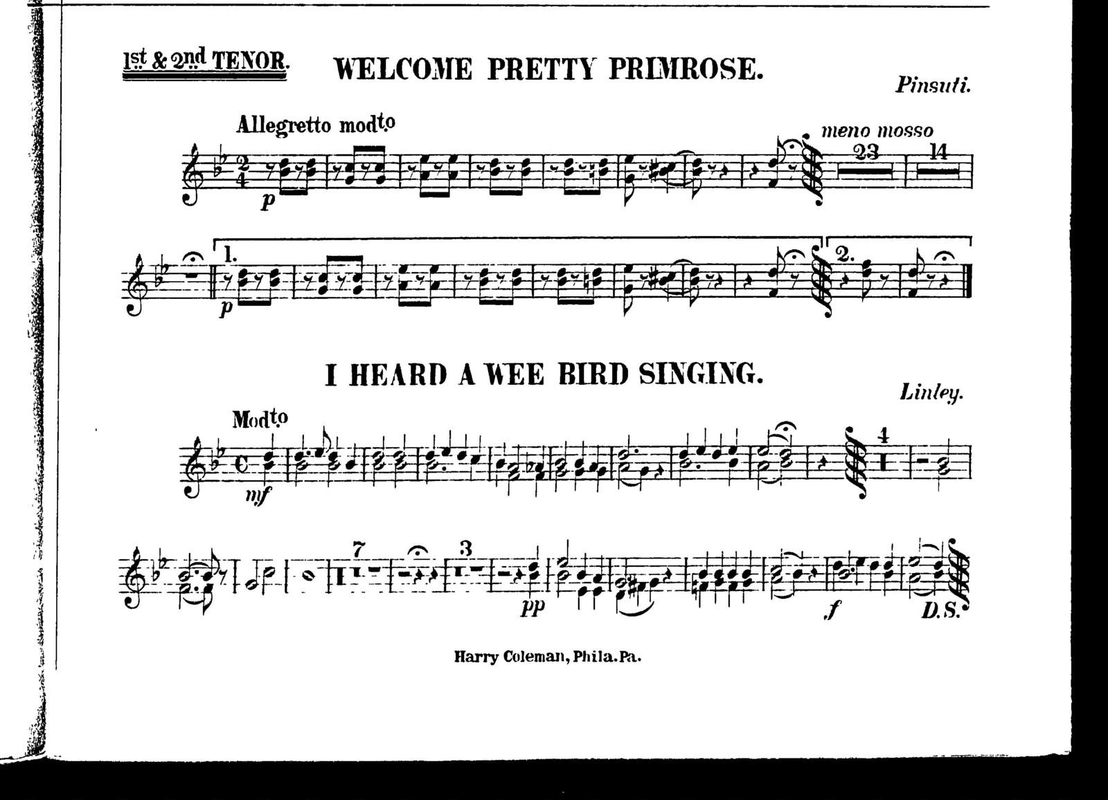 Welcome pretty primrose [and] I heard a wee bird singing