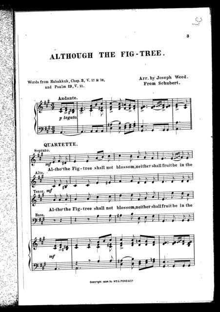 Although the fig-tree