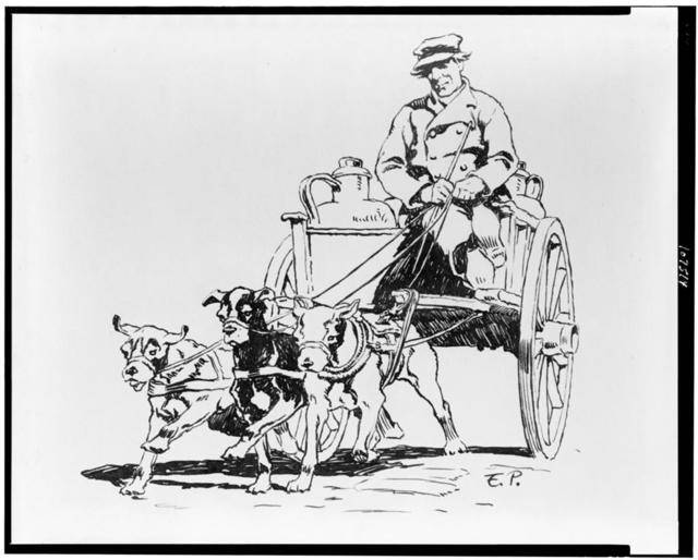 [Man in dog cart, Holland] / E.P.
