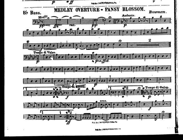 Medley overture; Pansy blossom