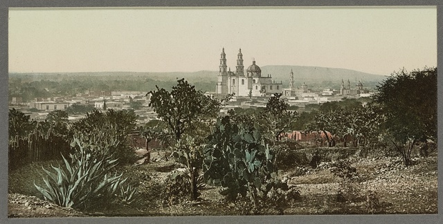 Mexico, view showing Cathedral Lagos