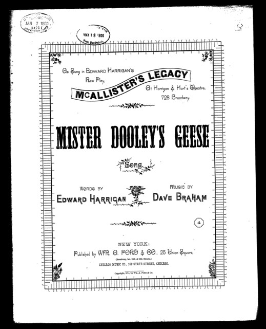 Mister Dooley's geese