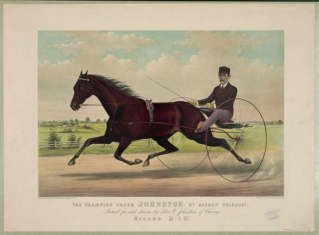 The champion pacer Johnston, by Bashaw Golddust. Named for and driven by Peter V. Johnston, of Chicago / J. Cameron.