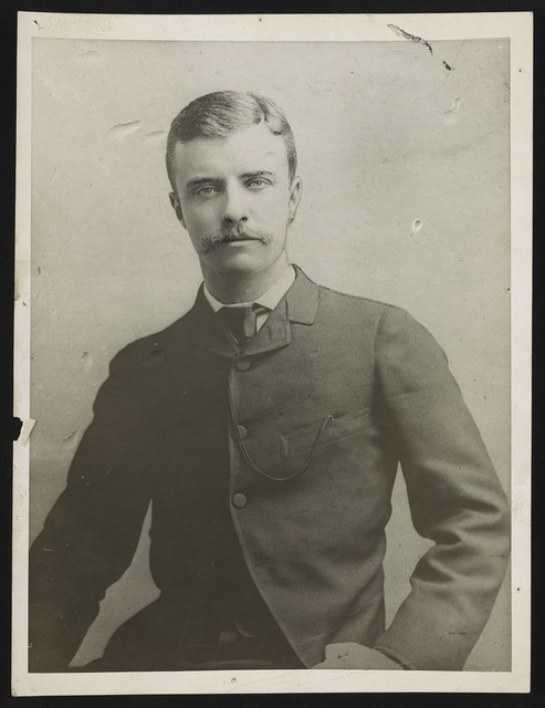 Theodore Roosevelt as assemblyman in 1884