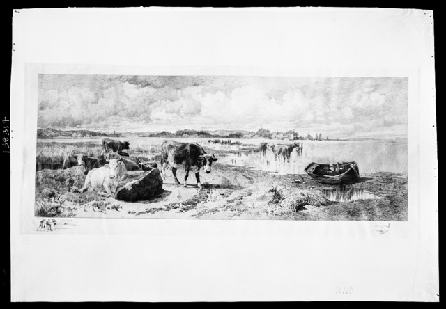 [Landscape with cattle]
