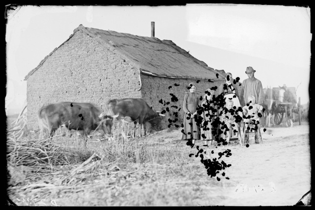 Chetron family in front of their sod house, West Union, Custer County, Nebraska.