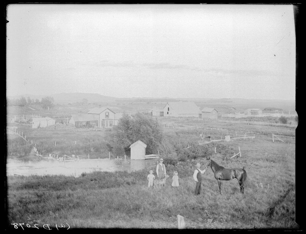Dan Haskel, west of Milldale, Custer County, Nebraska.