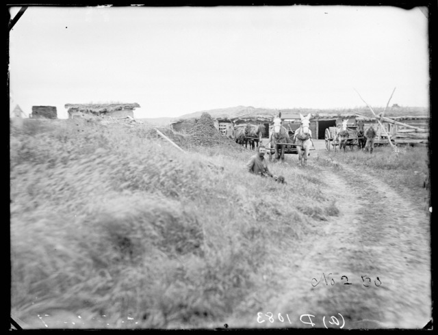 George R. Carr, New Helena, one of the oldest settlers in Custer County, showing his old dugout.