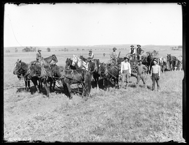 Group of men with horses building the Middle Loup irrigation ditch.