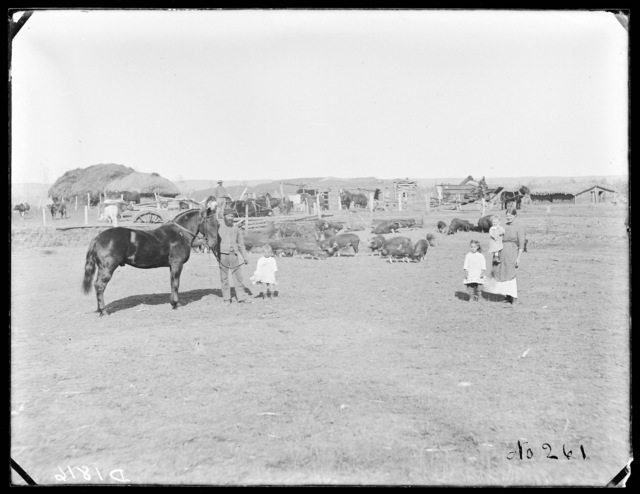 James Ash at Gates, Custer County, Nebraska.