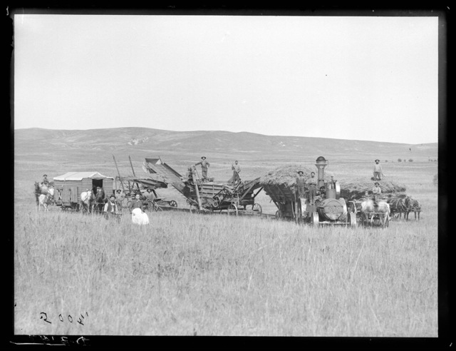 Jim Gates threshing crew near Gates P.O., Custer County, Nebraska.