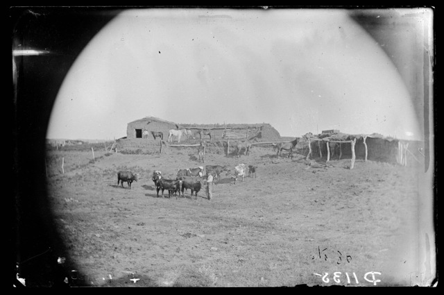 S.W. Leep, Milburn, Custer County, Nebraska.