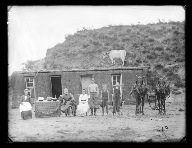 Sylvester Rawding family sod house, north of Sargent, Custer County, Nebraska.