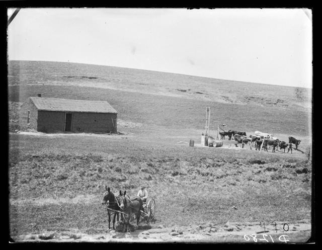 """Bradhum alone on the Frontier.""  Sargent, Custer County, Nebraska."