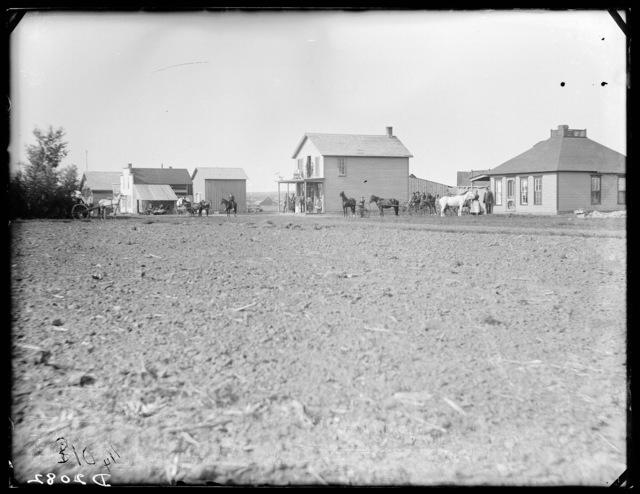 Douglass Grove or Old Wescott, Custer County, Nebraska.
